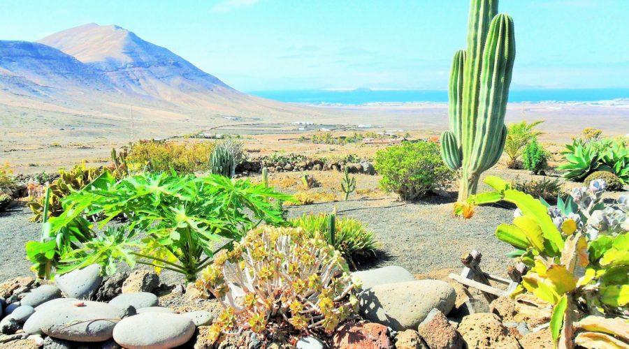 Casa Rural Los Ajaches, el descanso a la vera de la Atalaya de Femés