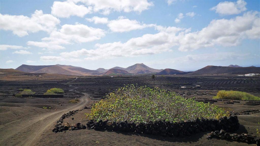 Camino Natural Etapa San Bartolomé Yaiza Recta Final hacia Uga